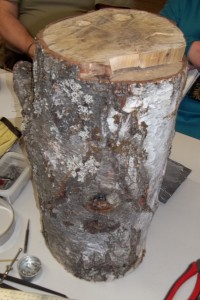 A big ugly stump